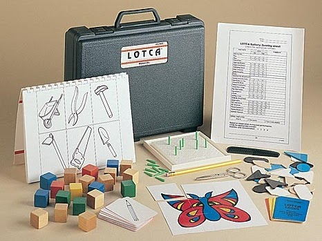 Occupational Therapy Assessment Tools For Schizophrenia