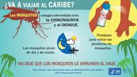 Dengue Life Cycle