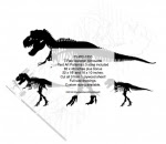 T-Rex Skeleton Silhouette Woodworking Patterns - fee plans from WoodworkersWorkshop® Online Store - dinosaurs,tyrannosaurus rex,T-rex,silhouettes,yard art,painting wood crafts,scrollsawing patterns,drawings,plywood,plywoodworking plans,woodworkers projects,workshop blueprints