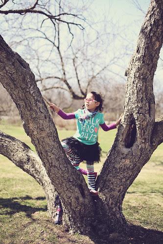 spring at the arboretum