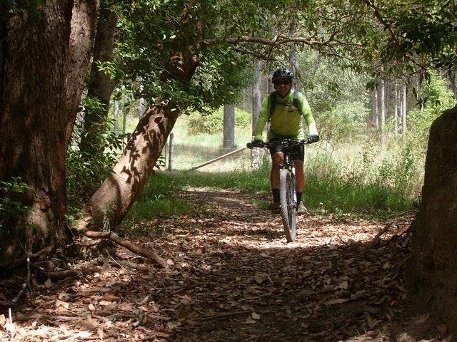 Cooran Trail