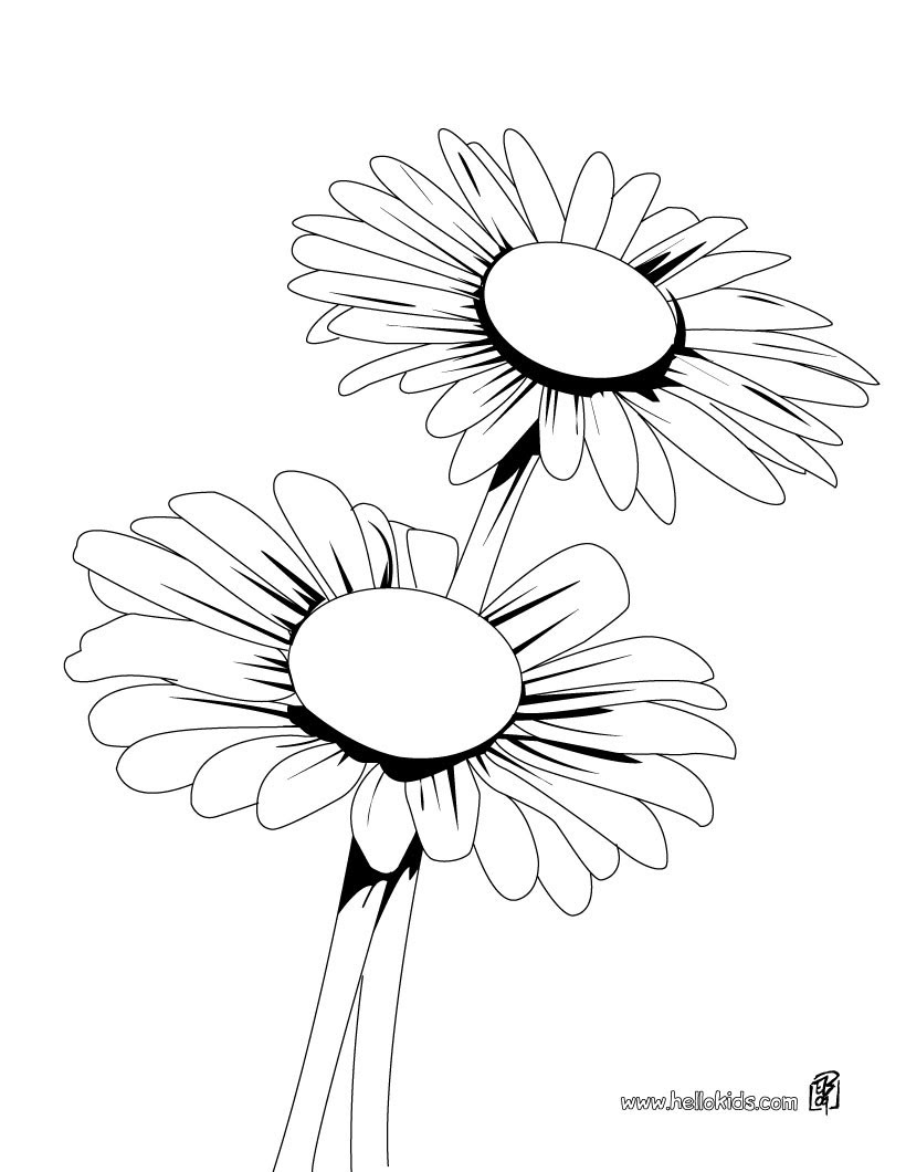 Daisy Flower Coloring Page Flower Coloring Page Coloring Pages
