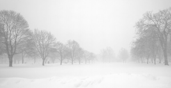 in snow and freezing fog