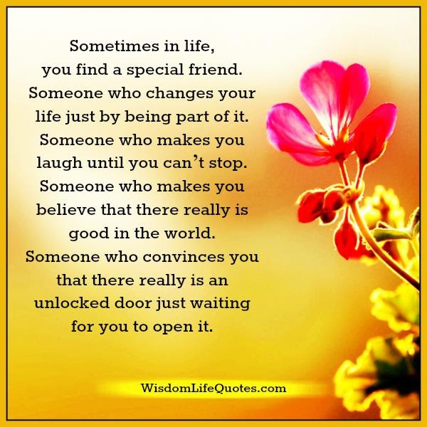 Sometimes In Life You Find A Special Friend Wisdom Life Quotes