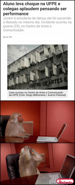 Estamos Tendo Um Ano Confuso Na Arte No brasil
