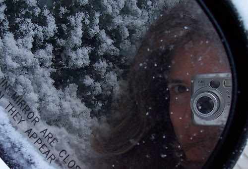 Snowflake self-portrait