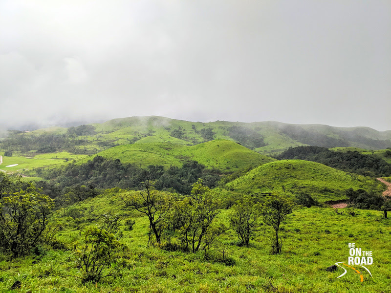 The greens of the Western Ghats that you see during the monsoons only