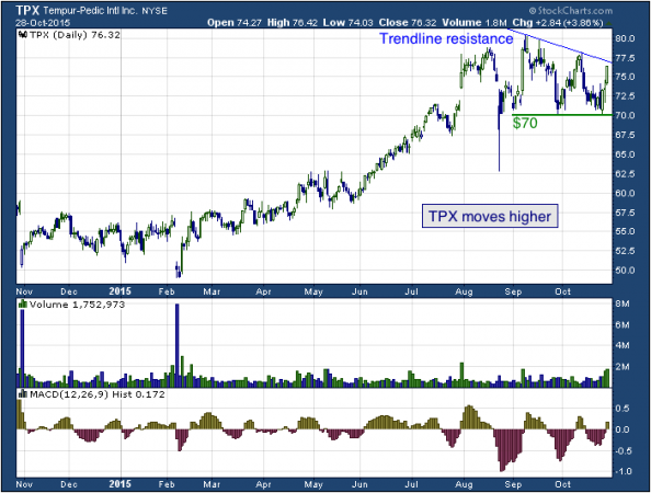 1-year chart of Vera (NYSE: TPX)