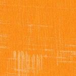 Painters Canvas Orange