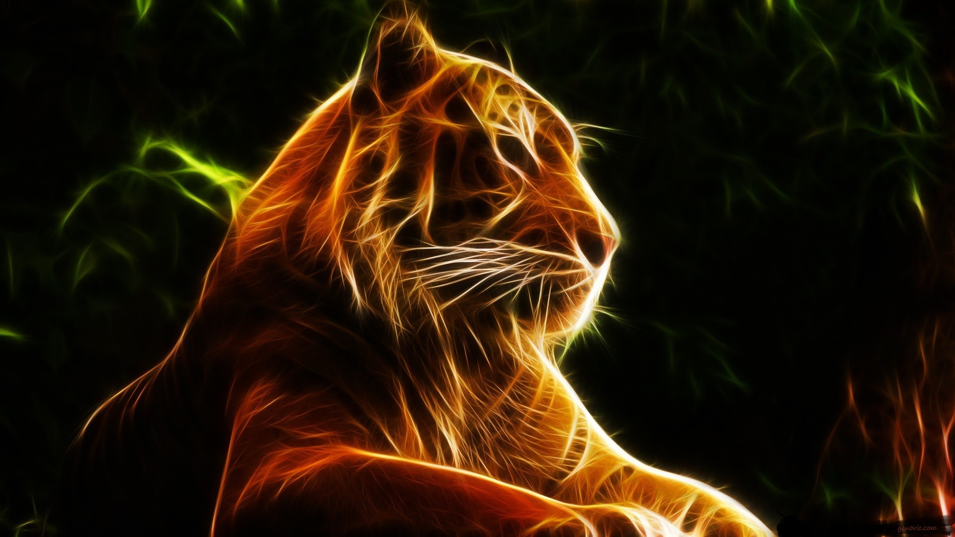 Tiger Wallpaper 3d Download