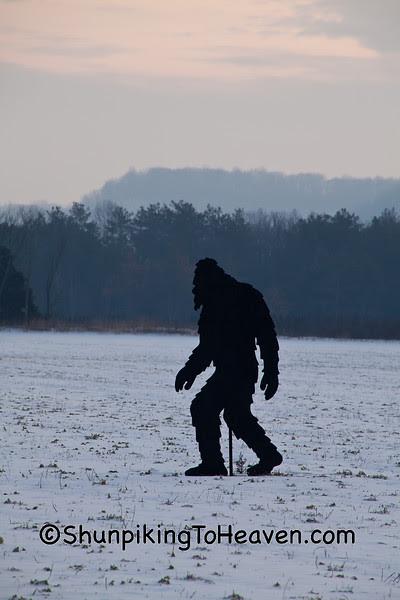 Bigfoot Cutout, Iowa County, Wisconsin