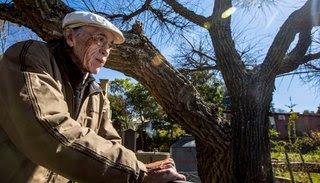 """Daniel Toro: """"Intenté echar raíces en la cultura y sembrar en los campos de la poesía"""""""