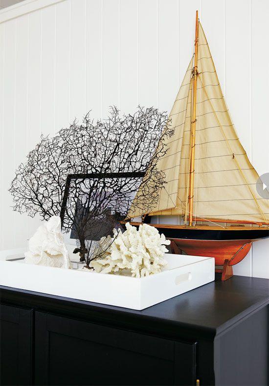 .Sea fan, coral, model sailboat