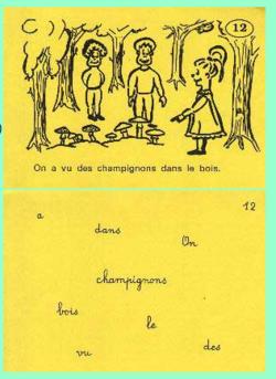 Les cartes à choix multiples : Phrase ou pas phrase ?