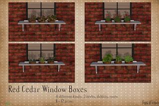fucifino.red cedar window boxes