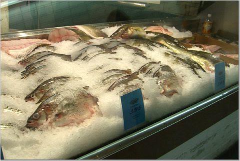 WSM Fish