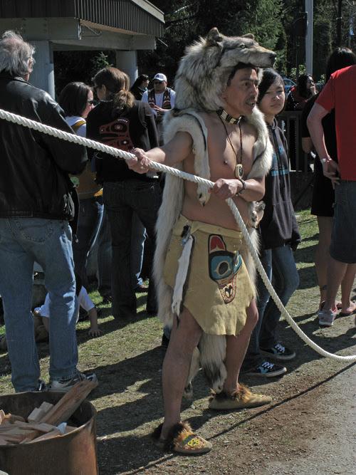 man in wolf head dress mans a rope at the eagle totem pole raising, UAS, Juneau, Alaska