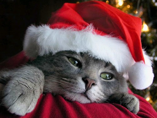 Dec 4 - christmas spirit 2