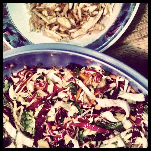Asian Salad with Pan Fried Rotisserie #incourage #17daydiet #4eu