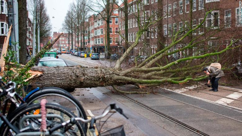 A man who escaped unharmed picks up his gloves after his scooter was hit by a crashing tree uprooted by heavy winds in Amsterdam, Netherlands, on Thursday.