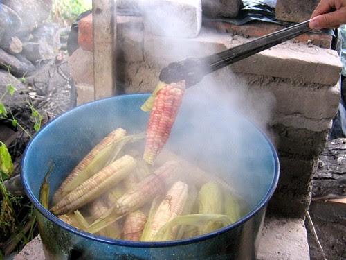 Olla de Elotes/Big Pot of Corn