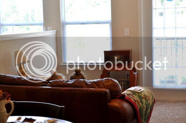 photo 1-DSC_0020-003_zps47adf794.jpg