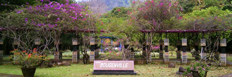 Lokasi dan Harga Tiket Masuk Kebun Raya Purwodadi