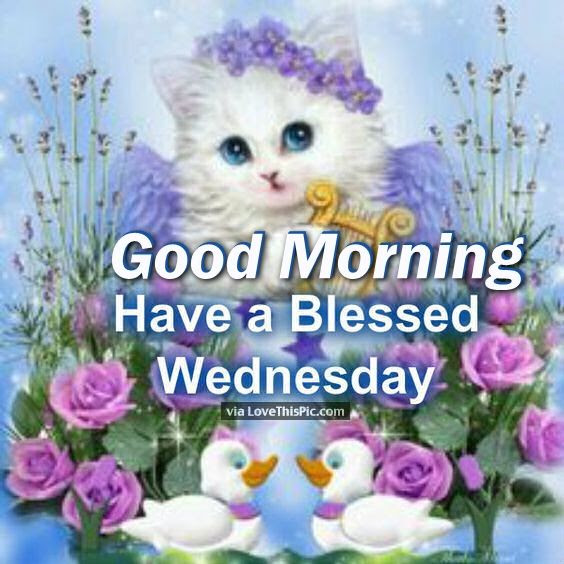 Good Morning Have A Blessed Wednesday Pictures Photos And Images