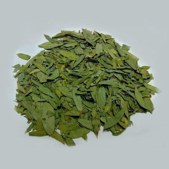 230-plantas-medicinales-mas-efectivas-y-sus-usos-sen-hojas