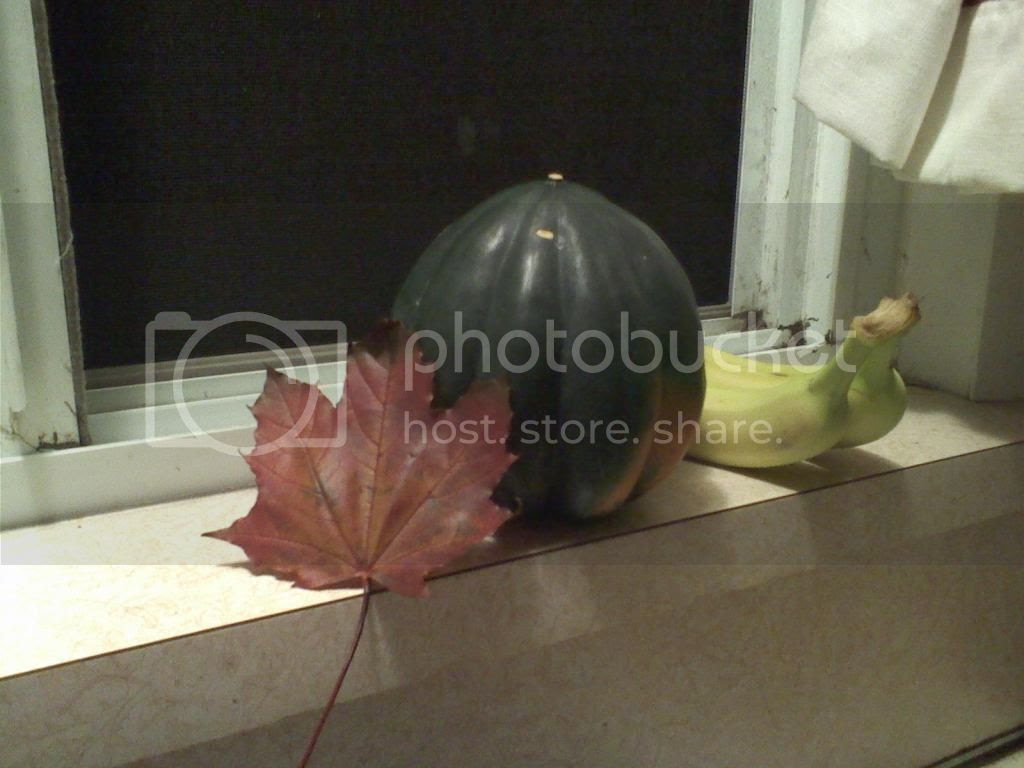 Still life with maple leaf, acorn squash, and two bananas