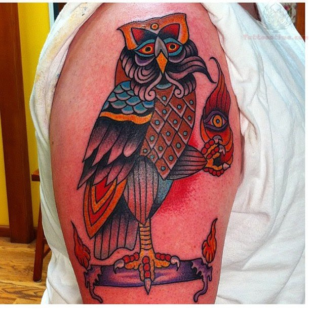 Beautiful Color Owl Tattoo On Bicep