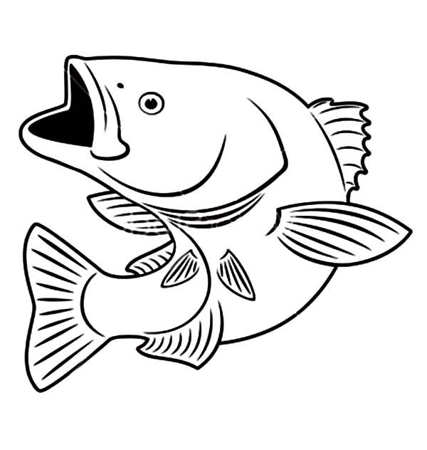 Fish Coloring Pages Free Download