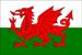 Welsh SEO Guide.