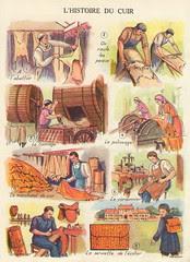 L'histoire du cuir