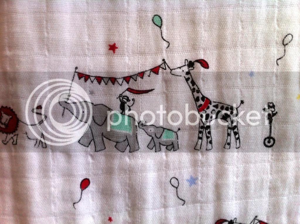 vintage circus classic dream blanket