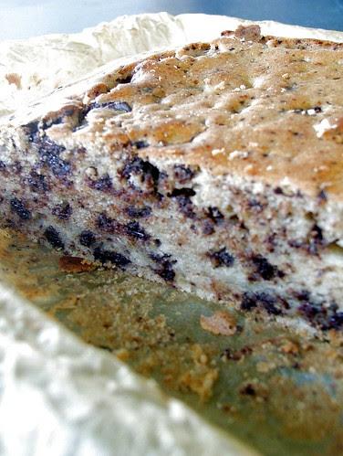 torta di ricotta 3