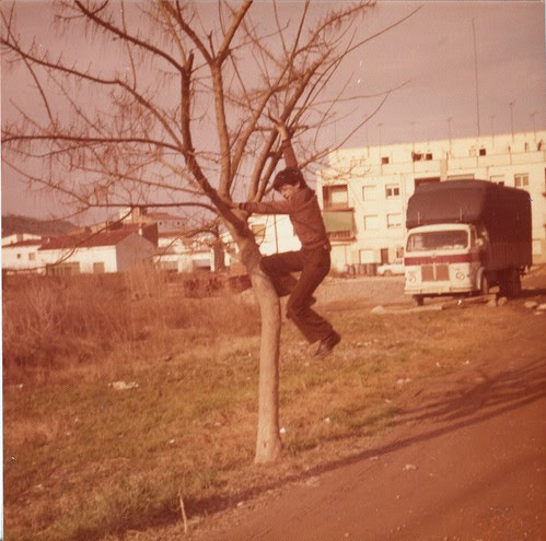 GENER 1976