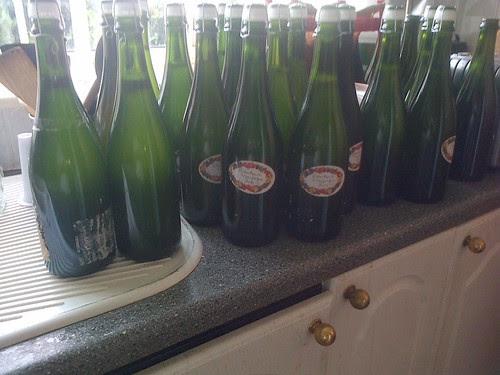 Elderflower champagne Jul 13