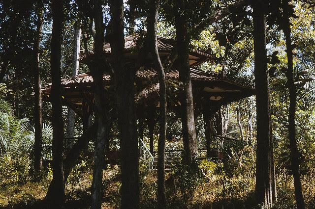 Saigon 1964 - nhà nghỉ trong vườn Dinh Độc Lập