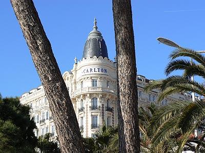 Carlton entre les palmiers.jpg