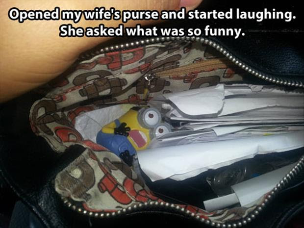 a inside a woman's purse funny pictures