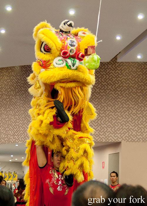 lion dance kam fook bondi junction
