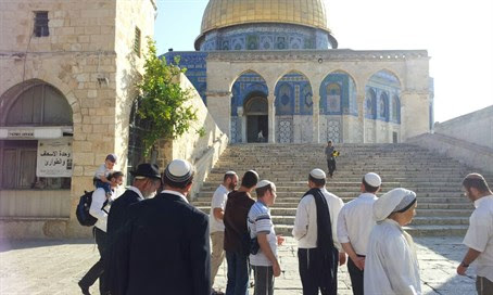Jews on the Temple Mount (file)