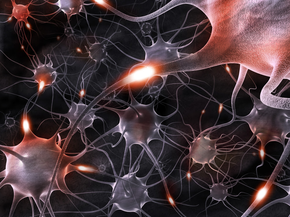 Transplanting Neural Stem Cells for Therapeutic Purposes – Addressing Parkinson's, Alzheimer's, Multiple Sclerosis, & More