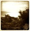 The view from the clifftop, at Jurassic Park...