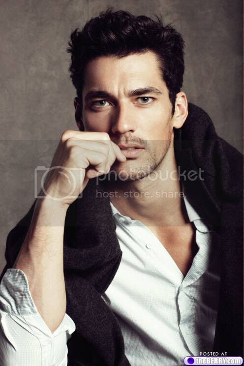 http://i880.photobucket.com/albums/ac3/aunteecr/eye-candy-david-gandy-0.jpg