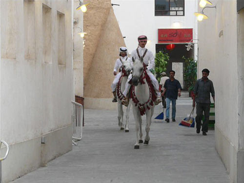 Horses with their toilet attendants