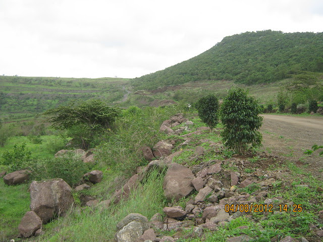 Cut, Demolished & Destroyed Hill of XRBIA Hinjewadi Pune - Nere Dattawadi, on Marunji Road, approx 7 kms from KPIT Cummins at Hinjewadi IT Park - 56