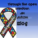 The Open Window Autism Blog