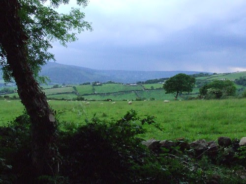 View From Joan's House